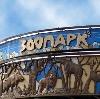 Зоопарки в Ярославле